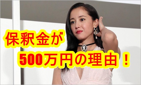 沢尻エリカの保釈金が500万円の理由!使い道や行方は?誰が払うの?